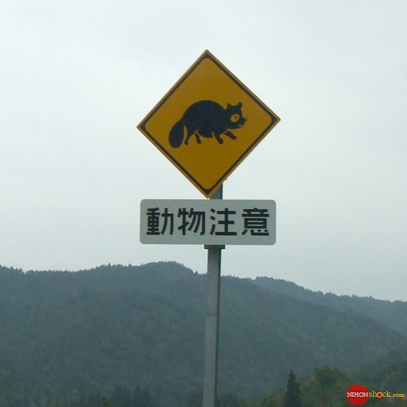Cutely animated racoon crossing highway sign